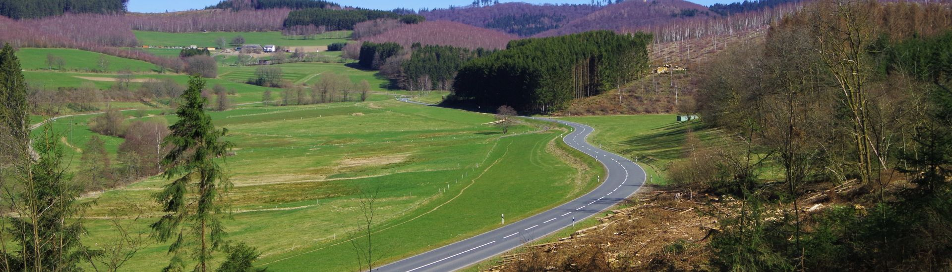 Das Bild zeigt eine Straße in der Natur.